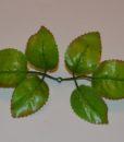 Искусственные цветы Листок роза натуральный L-23